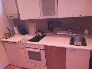 Küche/Küchenzeile in der Unterkunft Apartment Wasagasse