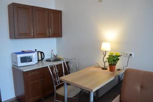 Кухня или мини-кухня в апартаменты-Площадь 1905г