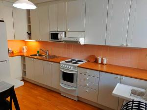 A kitchen or kitchenette at Spacious apartment DIANA in Helsinki city center