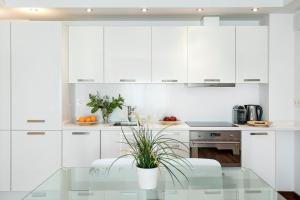 A kitchen or kitchenette at Glasir Apartments Barcelona