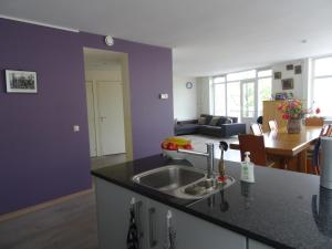 A kitchen or kitchenette at Fantastic&big canalapartment of 135m near center