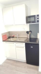 Cuisine ou kitchenette dans l'établissement Appartement Alouette France