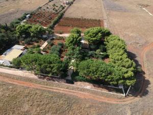 A bird's-eye view of Villa Santa Margherita