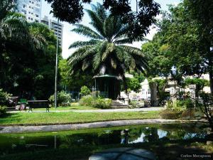 A garden outside APTO CENTRO HISTÓRICO
