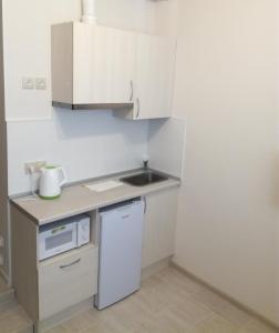 Кухня или мини-кухня в Апартаменты Искра