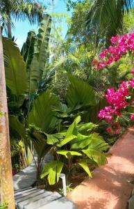 A garden outside Bois Joli