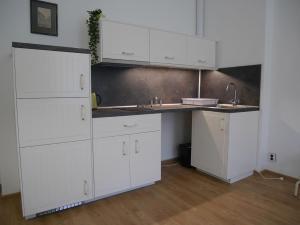 A kitchen or kitchenette at Moskevská 40