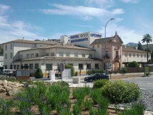 Foto del hotel  Hotel Lozano