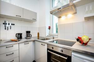 Küche/Küchenzeile in der Unterkunft RiSo Apartment 2