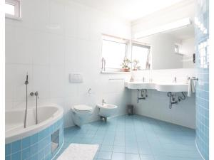 Ein Badezimmer in der Unterkunft Eight-Bedroom Holiday Home in Krizevci pri Ljutomeru