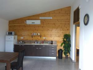 Küche/Küchenzeile in der Unterkunft The Rashbi studio apartments