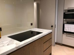 A kitchen or kitchenette at Luxurious Smart flat Mayfair