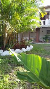 A garden outside Edelweis