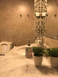 A bathroom at Amplio, moderno y luminoso departamento en la mejor zona de Tigre