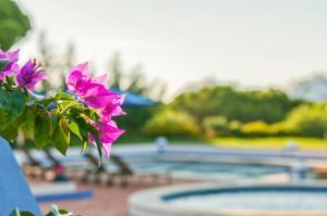 The swimming pool at or near Roja- Pe Villa Sleeps 12 Pool Air Con WiFi