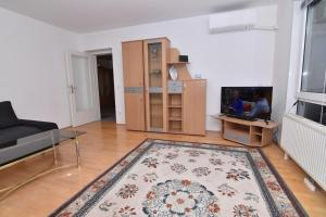 A television and/or entertainment center at Spacious Apartment by United Nations and Austria Center