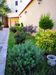 A garden outside Apartments Villa Jagoda