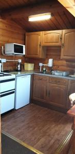 A kitchen or kitchenette at Rhinog View Mountain Log Cabin