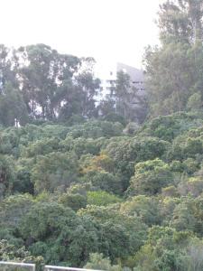 Natural landscape near the apartment