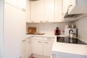 A kitchen or kitchenette at Vienna Living Apartments - Pilgramgasse