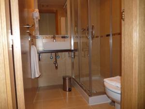 A bathroom at Apartamentos Salvia 4