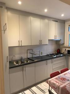 A kitchen or kitchenette at Rubenslei