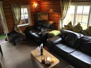A seating area at Snowdonia Norwegian log cabin