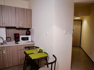 A kitchen or kitchenette at Aphroditi Apartment