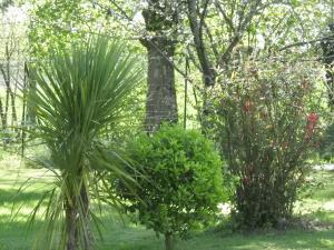 Jardin de l'établissement Gîte Rouge Calme et Nature