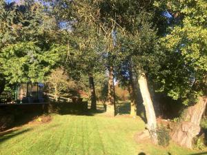 A garden outside Squirrel Barn