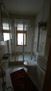 A bathroom at Große Ferienwohnung an den Schmetterlingswiesen