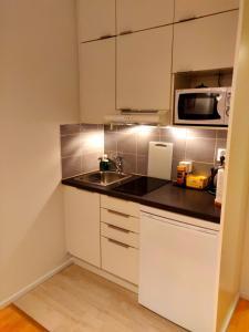 A kitchen or kitchenette at Studio in Helsinki city center