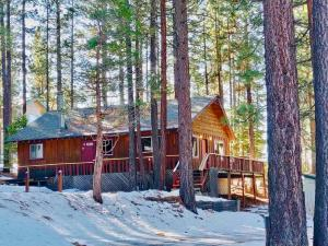 Cozy Cabin in Lake Tahoe during the winter