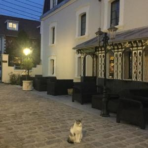 Hewan peliharaan yang menginap dengan tamu di Les Mini-lofts de Paul et Virginie