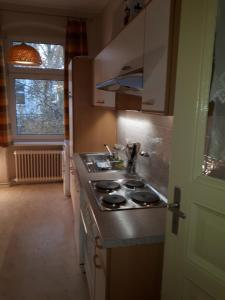 A kitchen or kitchenette at Holidayapartments Marquardt