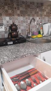 Virtuve vai virtuves aprīkojums naktsmītnē Neu Mann's Apart