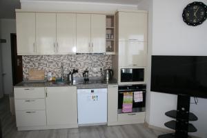 Кухня или мини-кухня в Apart Hotel Orbi Towers