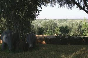 Les Jardins D'ourika