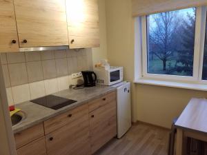 Köök või kööginurk majutusasutuses Mai Apartment