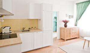 Küche/Küchenzeile in der Unterkunft Twin Apartment