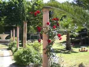 A garden outside Villa di Christian e Michelle