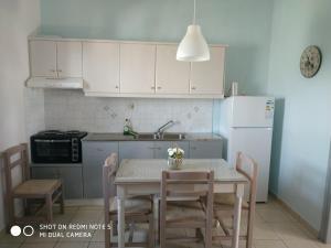 A kitchen or kitchenette at Niki Apartments