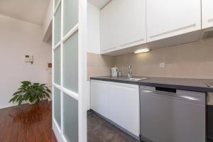 A kitchen or kitchenette at Premium Urban Apartment Rovinj
