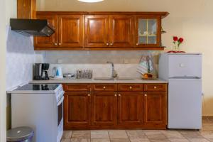 A kitchen or kitchenette at Naftis Apartments
