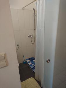 A bathroom at Penthouse Kaisermühlen