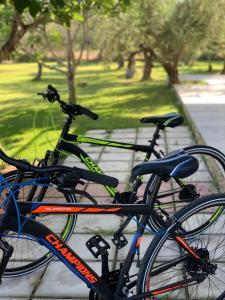 Fietsen bij of in de buurt van Anastasios Olive Garden Apartments