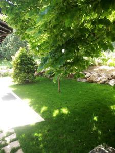 Vrt pred nastanitvijo Il ritorno
