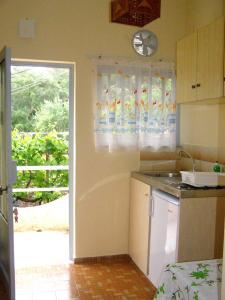 Η κουζίνα ή μικρή κουζίνα στο Απόστολος και Ελένη Οικογενειακά Διαμερίσματα