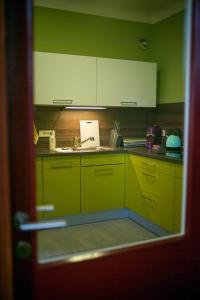 Kuhinja oz. manjša kuhinja v nastanitvi Suite 22