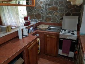 Kuchyň nebo kuchyňský kout v ubytování Cabana rustica